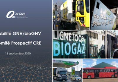 Le Comité prospectif de la CRE s'est informé sur la mobilité GNV/bioGNV